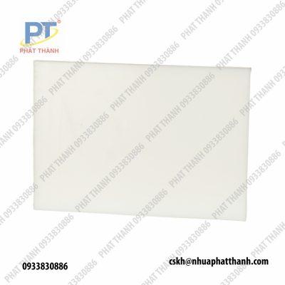 Mặt trước-sau thớt nhựa trắng dày nhựa công nghiệp loại 5cm, 10cm – cỡ lớn ( 2 mặt trơn)