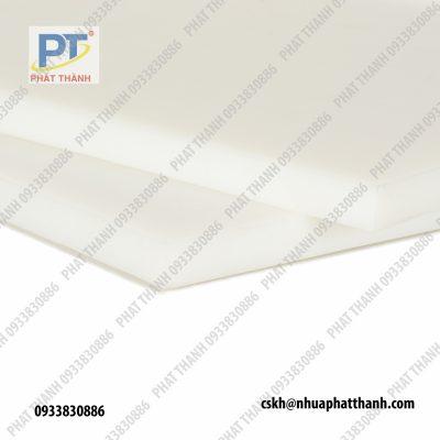 chi tiết Thớt nhựa công nghiệp HCM, Hà Nội loại dày 1 cm – cỡ lớn ( 2 mặt trơn)
