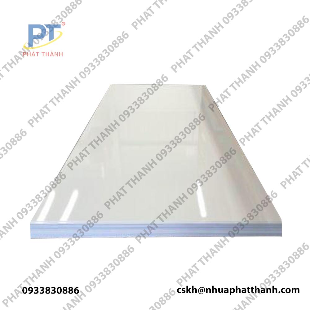 Thớt nhựa công nghiệp HCM loại dày 3cm – cỡ lớn ( 2 mặt trơn)