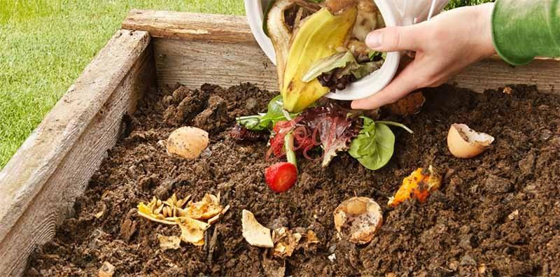 Xử lý rác thải hữu cơ làm phân bón